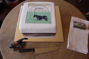 Acres Destiny's 21st Birthday Cake. February 2014.