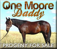 One Moore Daddy progeny for Sale