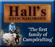 Hall's stockhorses