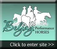 Visit Beljay Performance Horse's website